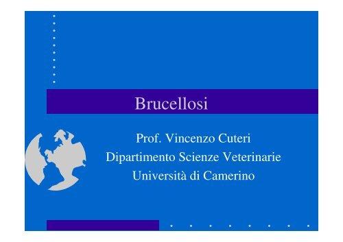 Brucellosi - Cuteri.eu