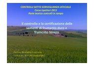 8-frusciante-CONTROLLI SOTTO SORVEGLIANZA ... - Ense