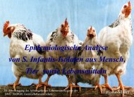 Miller, T., Prager, R., Pfeifer, Y., Fehlhaber, K., rabsch, W.