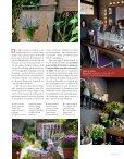 Erbe di campo, rose & rossetti - Bois de rose - Page 2