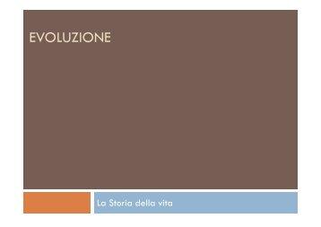EVOLUZIONE - Gcorticelli.It