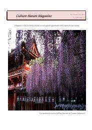 Culture Nature Magazine 1