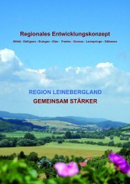 Regionales Entwicklungskonzept REGION LEINEBERGLAND ...