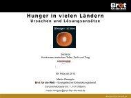 Hunger in vielen Ländern - Ursachen und Lösungsansätze (Remppis)