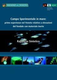Campo Sperimentale in mare: Rapporto Sintetico - Arpav