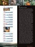 calabria produttiva - Page 5