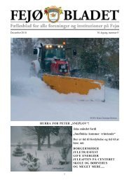 Fejoe-Bladet, 2010 - Nyheder fra Fejø – Huse til salg