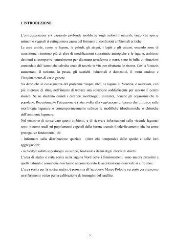 Capitolo 1: Introduzione - Istituto Veneto di Scienze, Lettere ed Arti