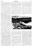 Anno XXVII Numero 4 - renatoserafini.org - Page 5