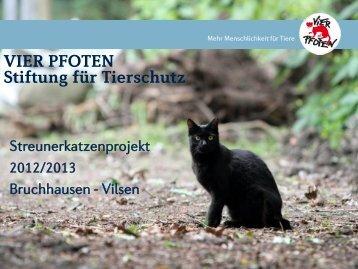 projekt in bruchhausen-vilsen - Vier Pfoten