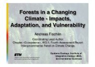 Forests in a changing climate - impacts, adaptation, and ... - CIFOR