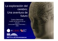 La exploración del cerebro: Una aventura de futuro