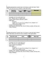 4. Subiecte TIC 2011 - De ce CNAIC?