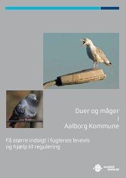 Duer og måger i Aalborg Kommune