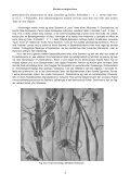 LANCELOT HOGBEN VIDENSKAB FOR HVERMAND - Gymportalen - Page 4