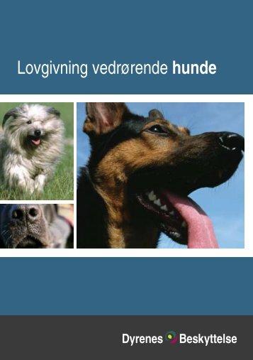 Lovgivning vedrørende hunde - Kennel NEWLUCK