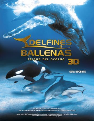 ejercicio a - delfines y ballenas 3d