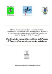 scarica la relazione in .pdf (784 KB) - Aree Umide della Toscana ...