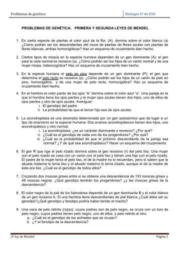Problemas de genética Biología 4º de ESO PROBLEMAS DE ...
