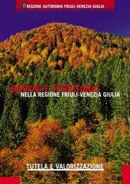 Bosco &TerritorioFVG - Regione Autonoma Friuli Venezia Giulia