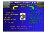 2011 Linee guida di difesa - Centro Vitivinicolo Provinciale