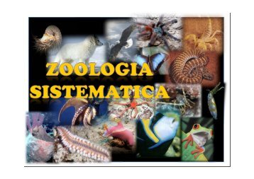 Zoologia Sistematica 1