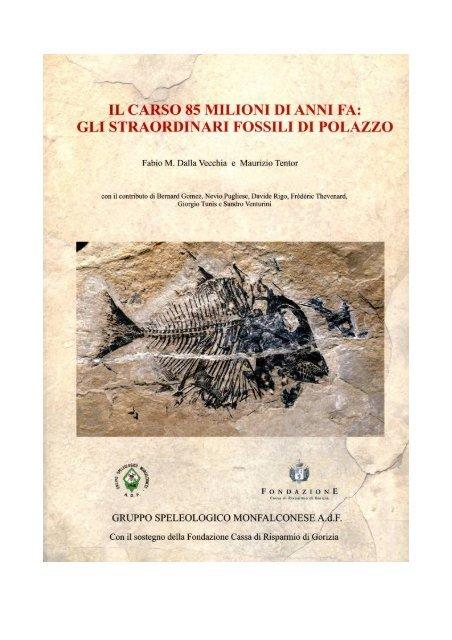 differenza tra fossili di datazione assoluti e relativi