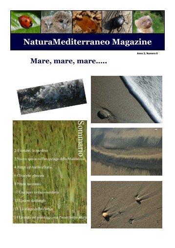 Magazine n.6 - Natura Mediterraneo