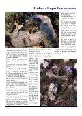 Magazine n.6 - Natura Mediterraneo - Page 2