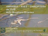 Lezione Bani, 25 febbraio - Parco Brughiera Briantea