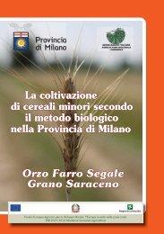 Scarica il file in formato pdf (2 MB) - Provincia di Milano