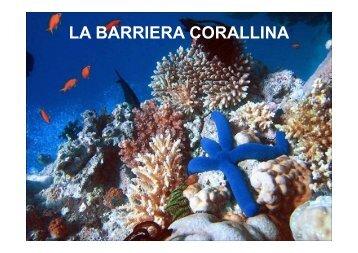 barriere coralline - ICSBattistella