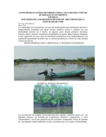 CONSUMISMO EN PAÍSES DESARROLLADOS, CAUSA ... - IUCN