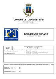 Relazione Geologica - Comune di Torre de' Busi