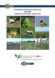 Rapporto dati provvisori 6° Censimento Agricoltura ... - Regione Lazio
