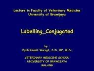 Labelling_Conjugated