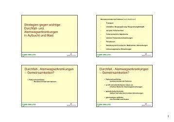 Strategien gegen wichtige Durchfall- und Atemwegserkrankungen in ...