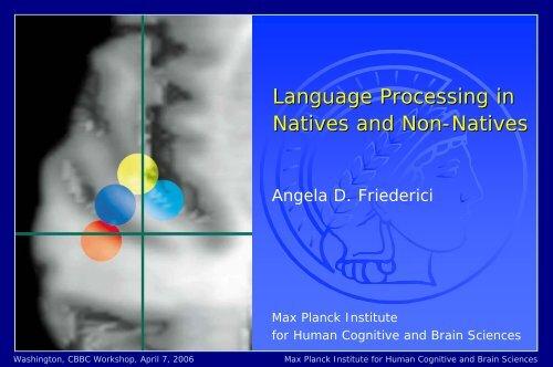 PDF of PowerPoint presentation - CBBC - Center for the Brain Basis ...
