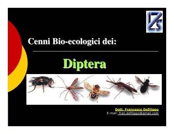 Diptera - Alimenti & Salute
