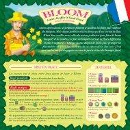 Bloom - nivozero