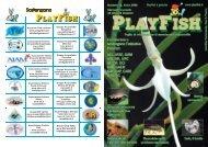 PlayFish - Numero 12 - AIPC