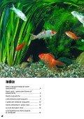 Guida 67 - Il Regno del Pesce Rosso - Page 2