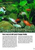 Guida 67 - Il Regno del Pesce Rosso - Page 3
