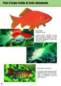 Guida 67 - Il Regno del Pesce Rosso - Page 4
