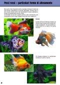Guida 67 - Il Regno del Pesce Rosso - Page 6