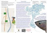 I Workshop ABaTe - Verso la tutela e la gestione sostenibile del ...