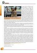 Parte prima - Ministero Dell'Interno - Page 6
