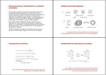 Nanoestructuras, femtoquímica y sistemas complejos Medios ...
