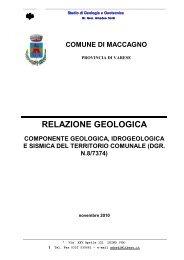 RELAZIONE GEOLOGICA - Portale di cartografia on-line - Provincia ...