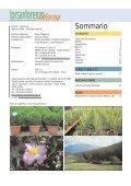 Vivaismo Verde Pubblico Paesaggismo Vivaismo Verde Pubblico ... - Page 2